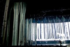 Shania-Twain-back-drop-2