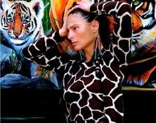 Jungle House Safari